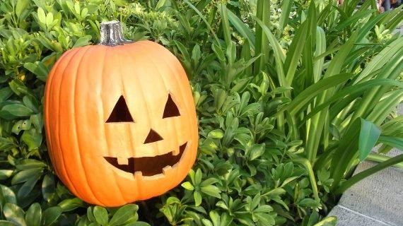 31. oktoober – Halloween